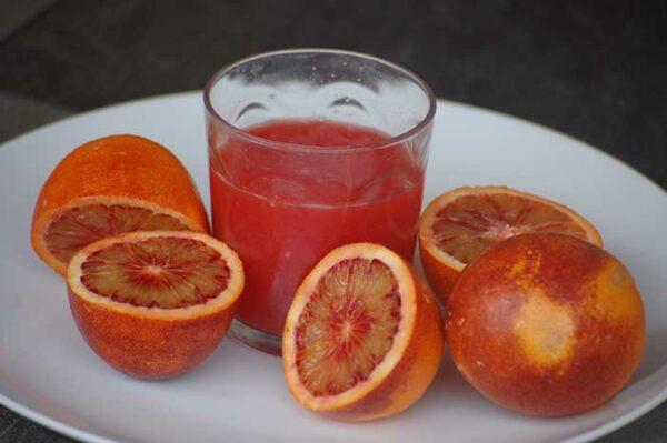 zumo de naranjas rojas