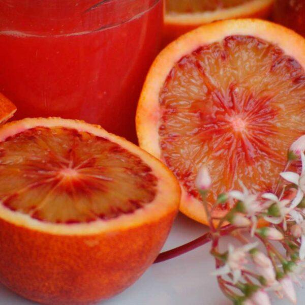 naranja de sangre o sanguna