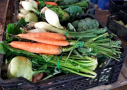 verduras orgánicas de alboraia
