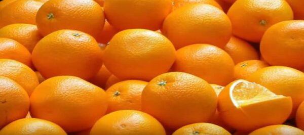 consejos elección naranjas