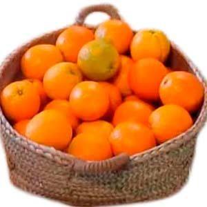 pcomprar naranjas al por mayor