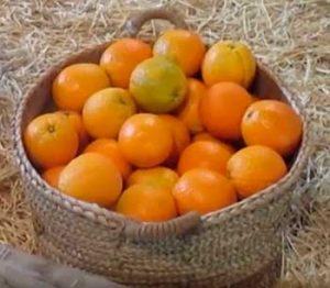 pedidos de naranjas ecológicas