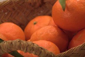 mandarina como quema grasas