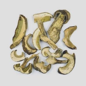 shiitake desecado ecológico