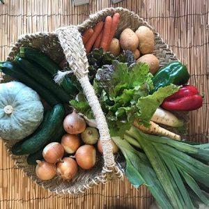 cestas de verdurs ecologicas