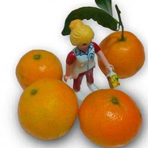 mandarinas ecológicas para niños