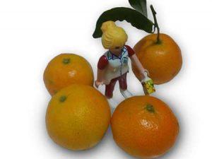 mandarinas ecológicas para niños pequeños