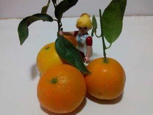 mandarinas para niños ecologicas